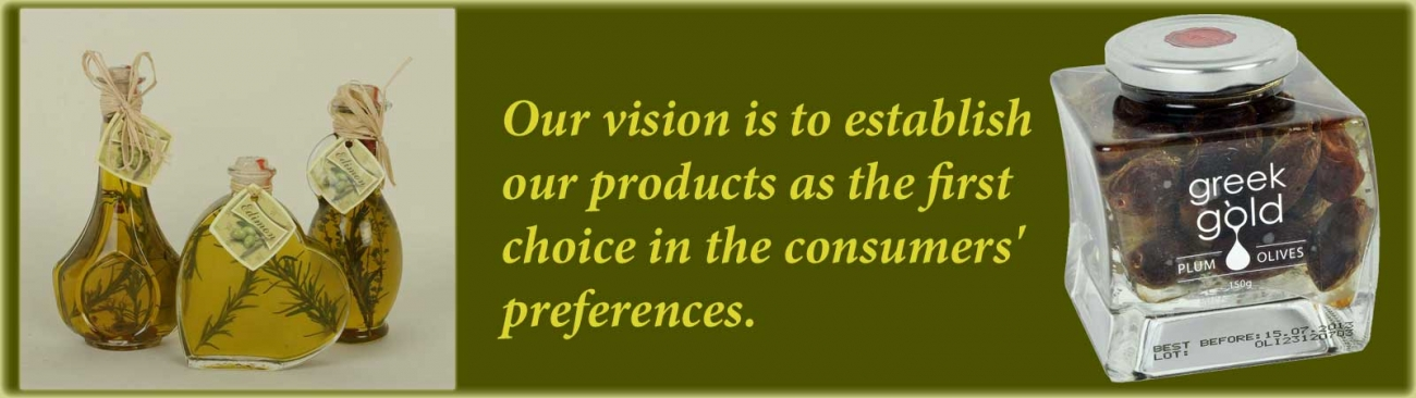 /our-company/vision-and-values